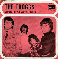 Troggs Night Of The Long Grass