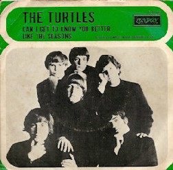 turtles discography